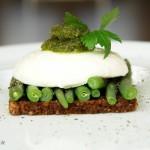 Grüne Bohnen mit Mozzarella und Petersilien-Pesto auf Schwarzbrot